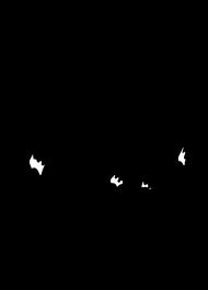 Kozica górska - koszulka męska bez rękawów