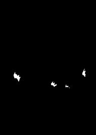 Kozica górska - koszulka damska