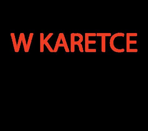 Dzień w KARETCE