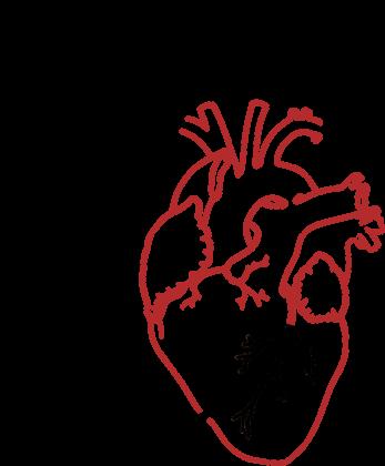 Zawal serca - koszulka damska