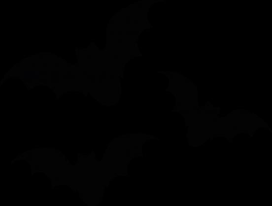 Kubek - Nietoperze