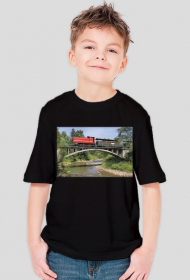 Koszulka chłopięca #1