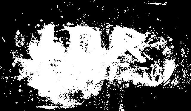 Koszulka damska • LDR