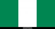 Koszulka z flagą Nigerii.