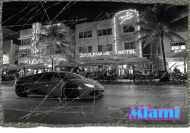 Koszulka Miami.