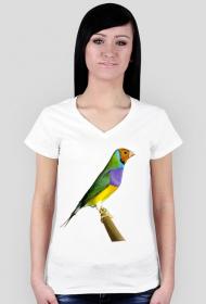 Koszulka Amadyna