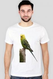 Koszulka Falista