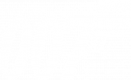 Agentka 007