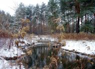Nad rzeką zimą.