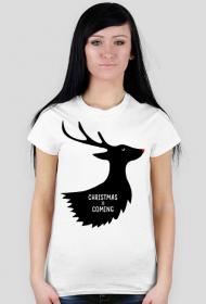 Christmas is coming - damska koszulka świąteczna