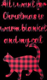 Koc i kot na święta, prezent na mikołajki