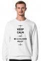 Bluza męska bez kaptura, Keep calm and be a glider pilot
