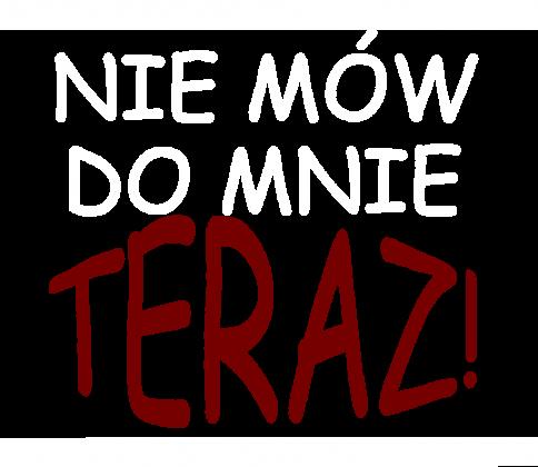 Koszulka męska '' Nie mów do mnie teraz''