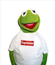 Kermit x Supreme Hoodie