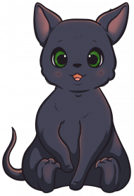 Koszulka - Kotek / Little Cat