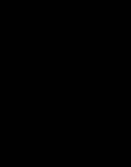 Liskowa torba (czarny nadruk)