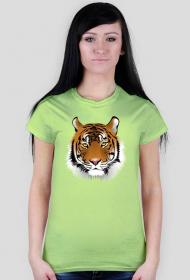 Koszulka damska - Tygrys