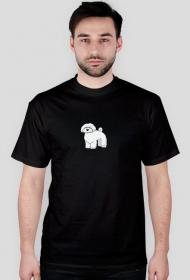 Męska koszulka - czarna - Maltańczyk