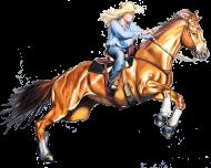 Cowgirl koń