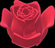 Plecak z Różą