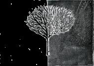 Torba - Czarno-białe Drzewo