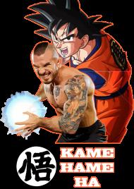 Koszulka 'Kamehameha'