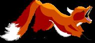 bluza damska jawn fox