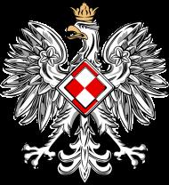 AeroStyle - dwustronny nadruk, bluza z motywem patriotycznym