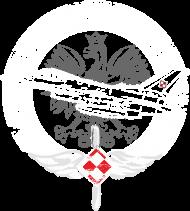 AeroStyle - bluza Polish Air Force F16