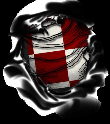 AeroStyle - damska koszulka z szachownicą lotniczą 3D