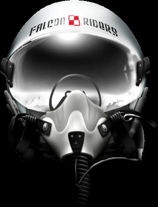 AeroStyle - bluza męska Falcon Riders