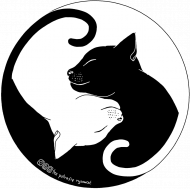 Koty - koszulka męska kolor/czarna