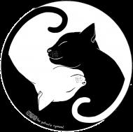 Koty - koszulka damska kolor/czarna