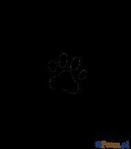 Łapka na błocie - koszulka męska czarne rękawy