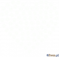 Serce w łapki - luźna koszulka damska