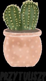 Kaktusowy przytulas