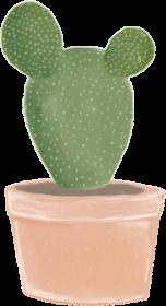 Kaktusowa poszewka
