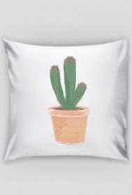 kaktusowa poszewka 1