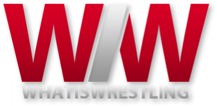 Kubek What is Wrestling
