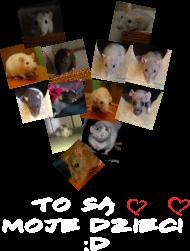 Koszulka szczurze serce