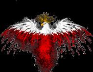 Eagle mask