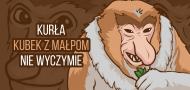 Kurła Kubek z małpom, nie wyczymie - Kubek Nosacz