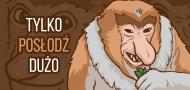 Tylko posłodź dużo - Kubek z małpą nosaczem