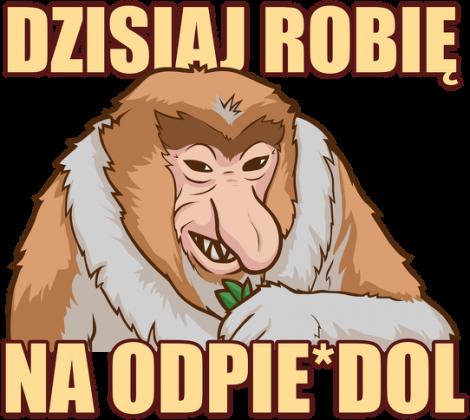 Dzisiaj robię na odpie*dol - Koszulka Somsiad - Typowy Janusz Sklep (Damska)