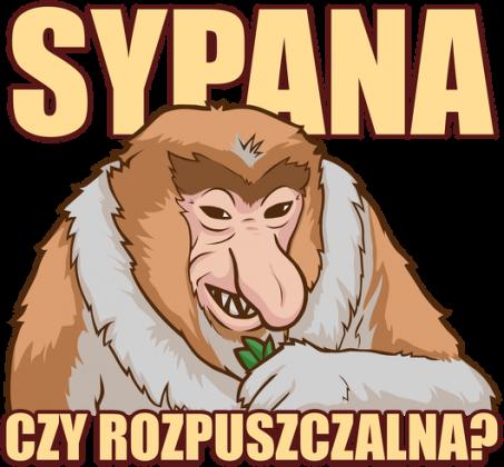 Sypana czy rozpuszczalna - Śmieszna Koszulka Nosacz (Damska)