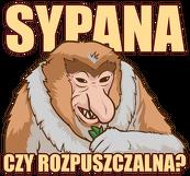 Sypana czy rozpuszczalna? - Kubek Typowego Polaka - Nosacz / Somsiad