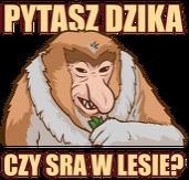 Dwa wzory - Kubek - To co szwagier, po maluchu? + Pytasz dzika czy sra w lesie?