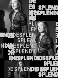 DisApproval_Splendide