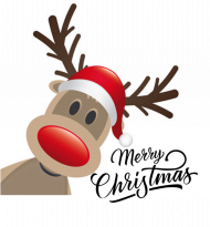 Merry Christmas - koszulka męska
