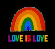 Love is love - koszulka męska LGBT